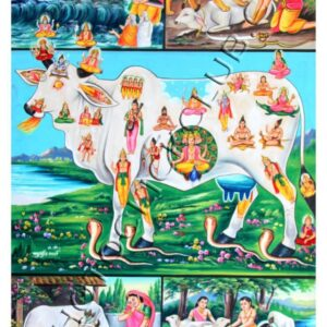 Holy Cow in Hindu Religion